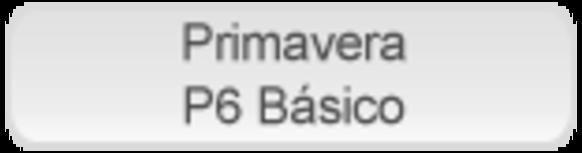 P6_basico