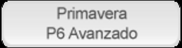 P6_avancado_es